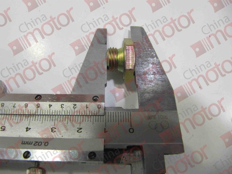 Болт заглушка Фотон-1049A.1069.1099 T0650204