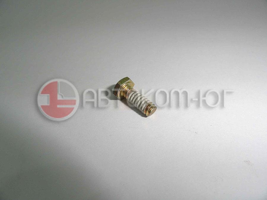 Болт фиксир маслоприемник оси коромысел Фотон-1138A T2233022